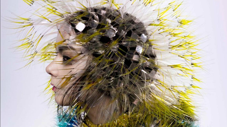 Björk adelanta Family, nuevo clip para Vulnicura