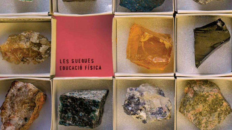 Les Sueques – Educació Física (El Genio Equivocado, 2015)