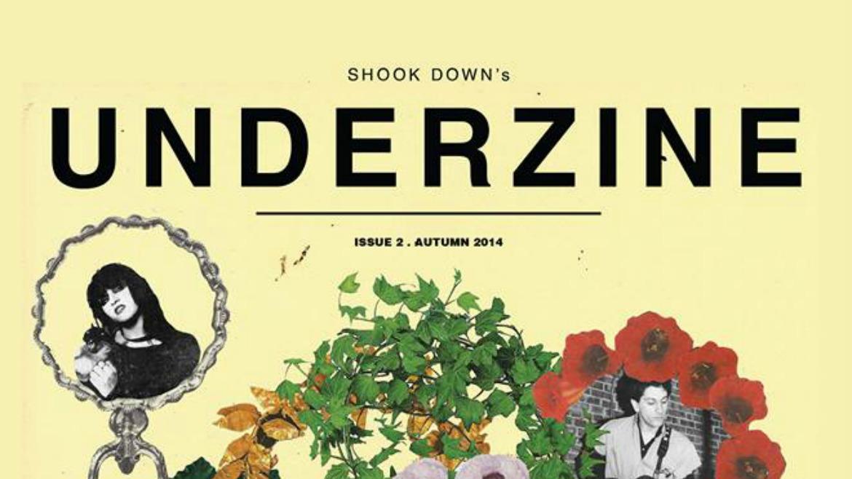 Shook Down Underzine 2: todos los detalles