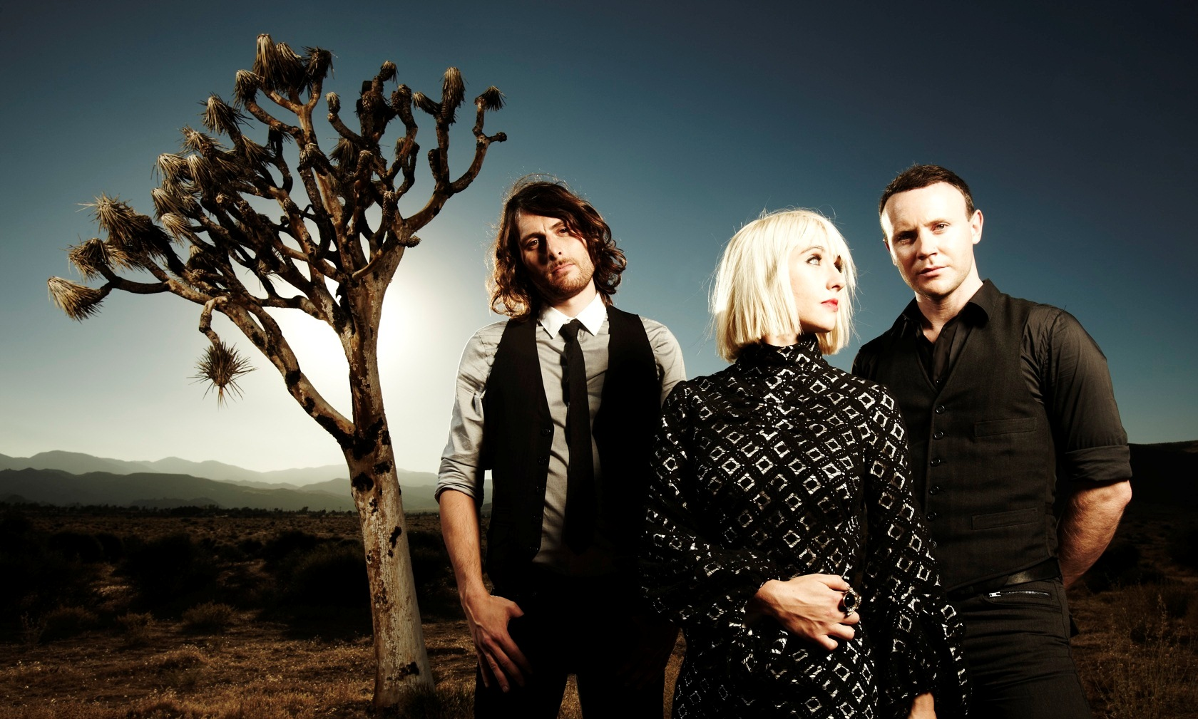 The Joy Formidable – Wolf's Law (Atlantic Records, 2012)