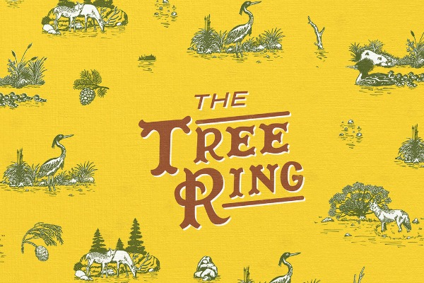 The Tree Ring anuncia disco y el fin de una etapa