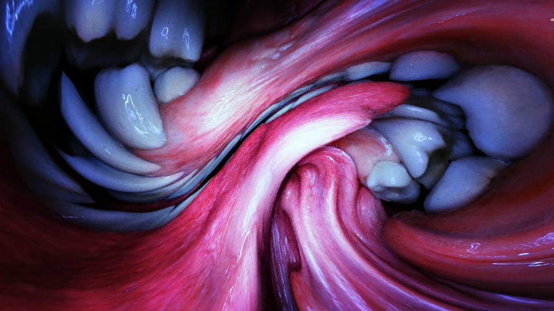 Björk – 'Mouth mantra'